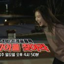 Running Man Episode 376